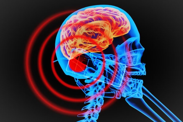 Cell Phones Affect Brain Metabolism