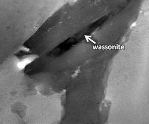 Mineral wassonite
