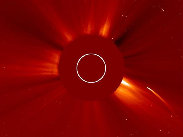 Comet Dives Into Sun