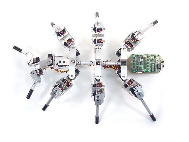 Ant robot