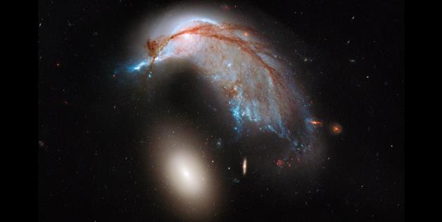 Shining stars penguin from telescope Hubble