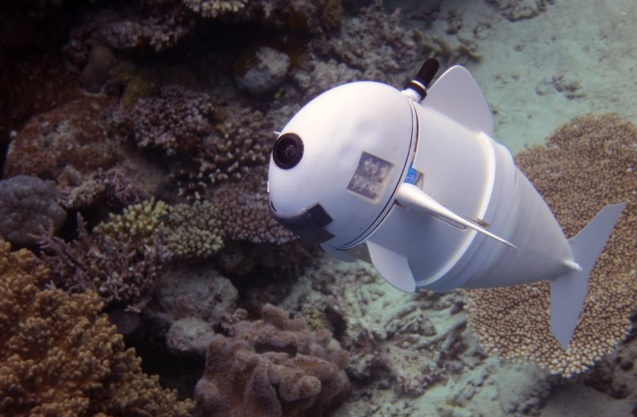 Robotic Fish Can Discover the Secret Life of Ocean Wildlife
