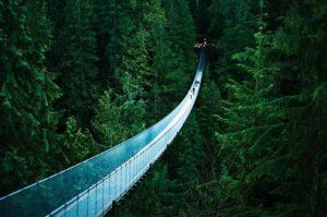 bridge is 140 meters long and 70 meters above the river