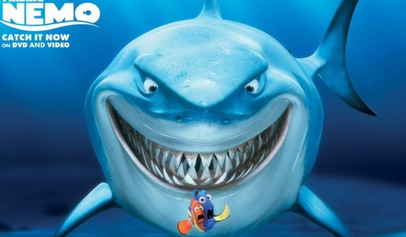 Have you Ever thought about whether shark Can smile?