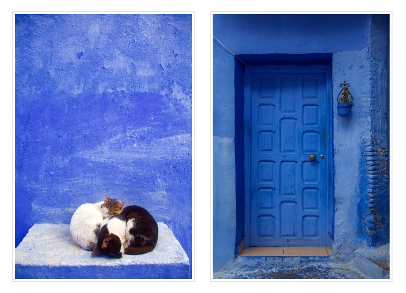 Blue city is a small city that is renowned for its beautiful streets made up of Moroccan blue paint