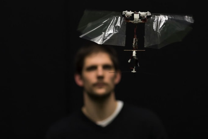 Newest and Most Agile DelFly Robot Can Fly Like the Real Insect