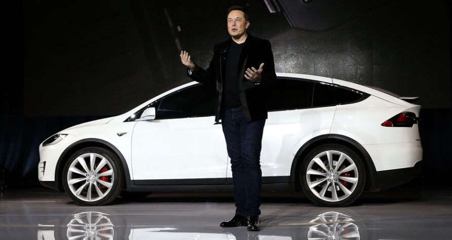 Elon Musk Has Tweeted About Dog Mode for Teslas