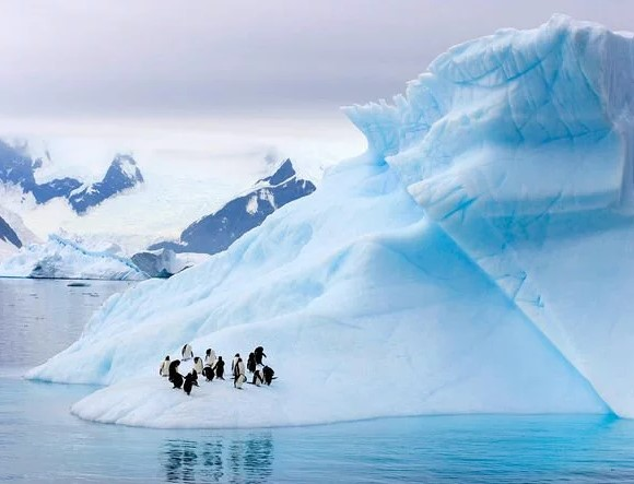 Scientists Have Warried Antarctica Ice is Melting Five Times Faster