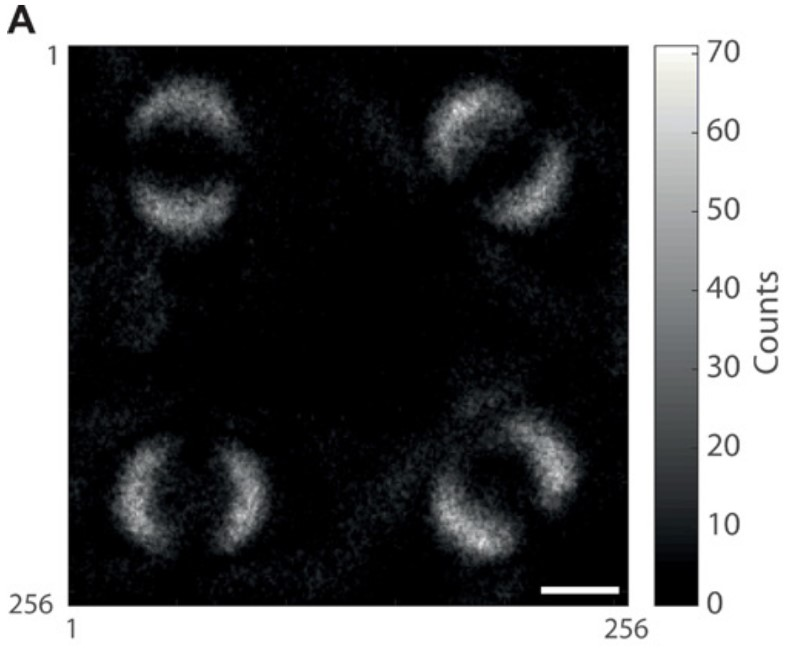Scientists Just Revealed First Photo of Quantum Entanglement