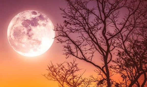 The Special Full Moon Called Harvest Moon Happened on Friday 13