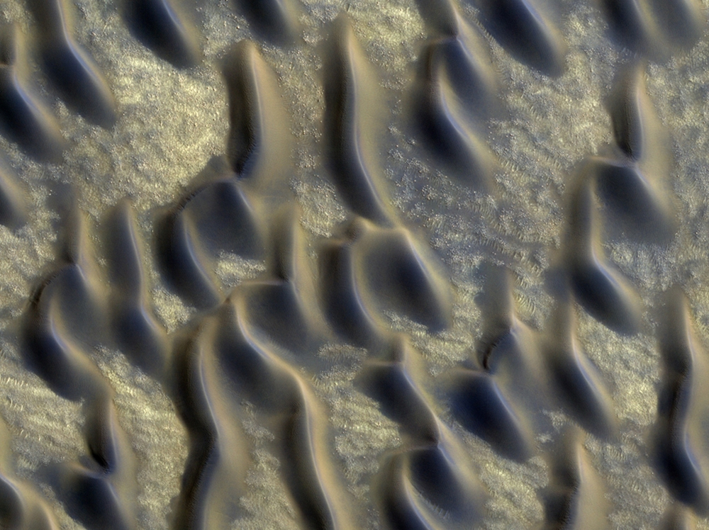 Origin of strange ravines in dunes on Mars